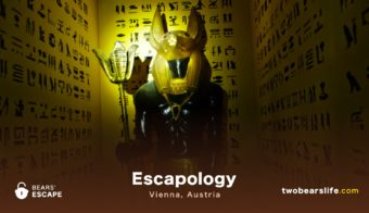 "Bears' Escape ""Escapology"" in Vienna"