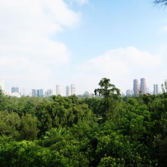mexico-city-view