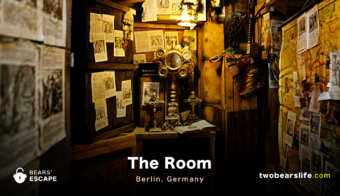 "Bears' Escape ""The Room"" in Berlin"