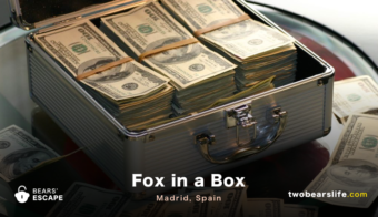 Fox in a Box - Madrid